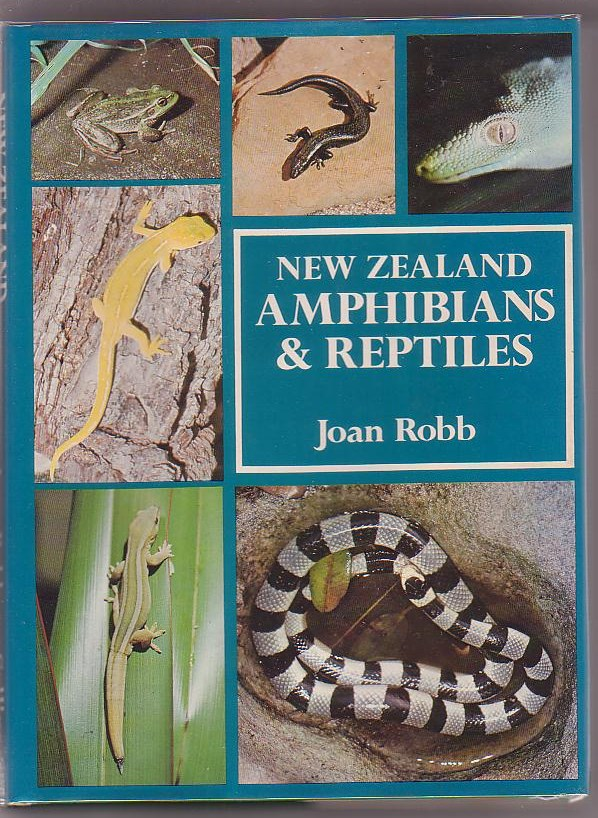 Image for New Zealand Amphibians and Reptiles in Colour