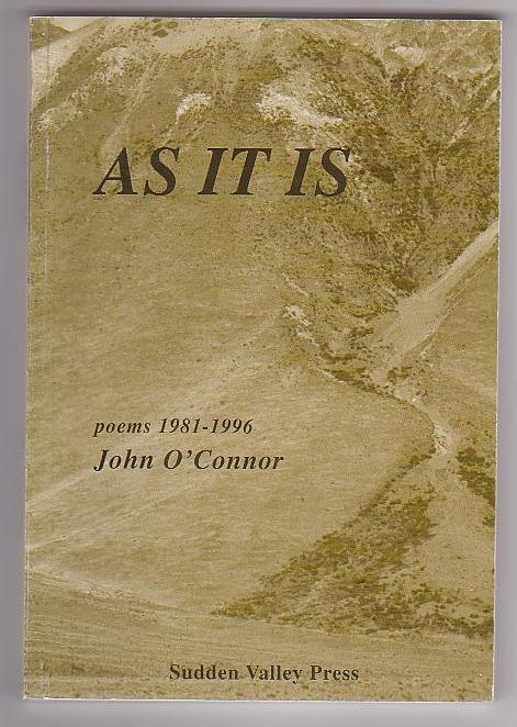 Image for As It Is: Poems 1981-1996