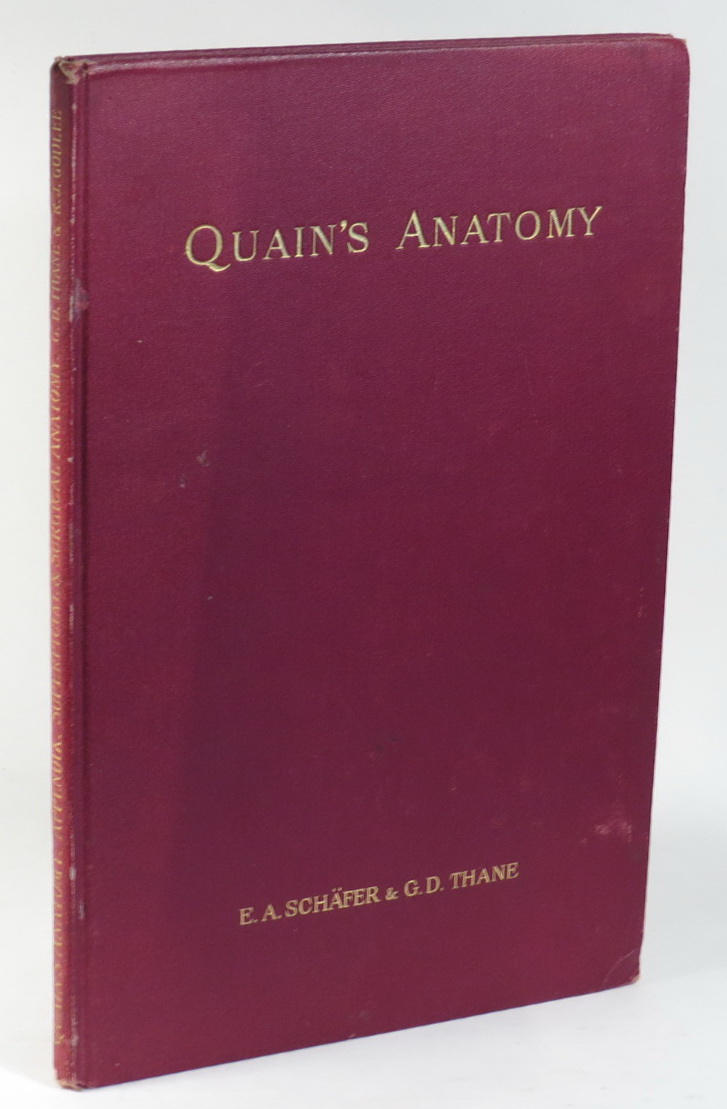 Quains Elements Of Anatomy Appendix Superficial And Surgical