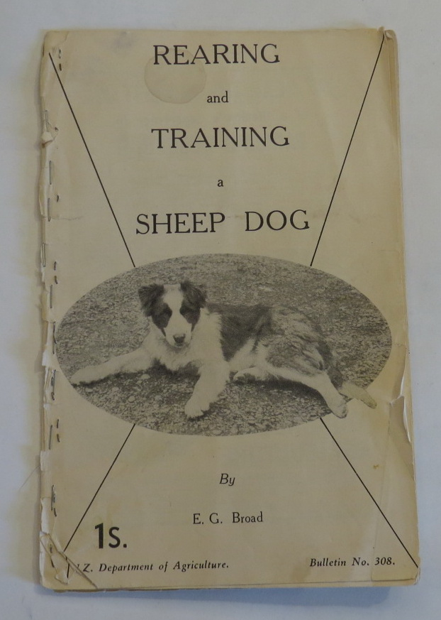 Image for Rearing and Training a Sheep Dog