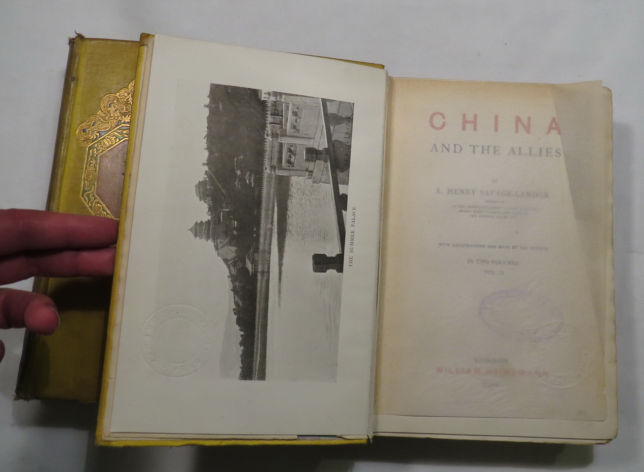 Image for China and the Allies
