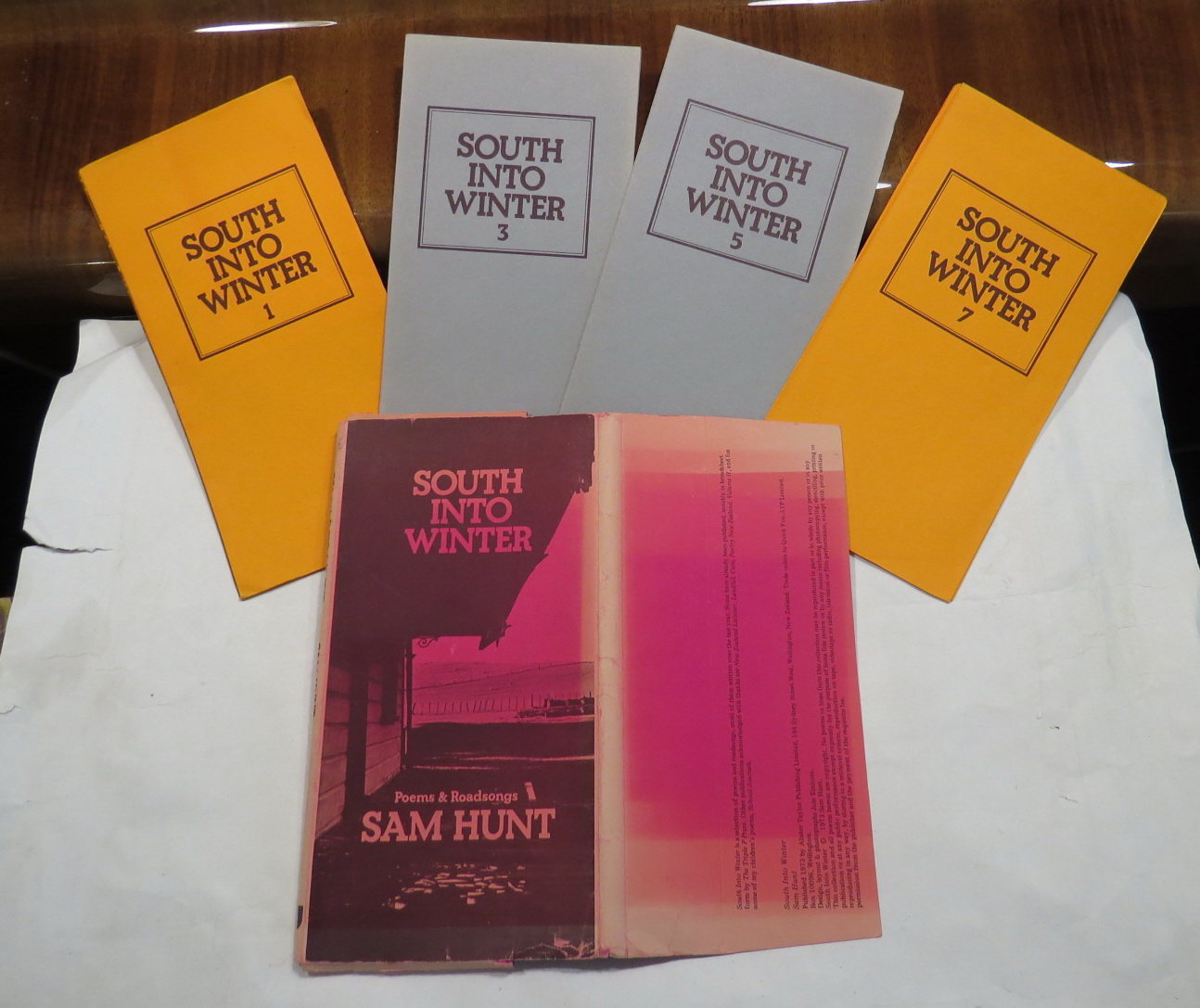 Image for South into Winter - Poems & Roadsongs