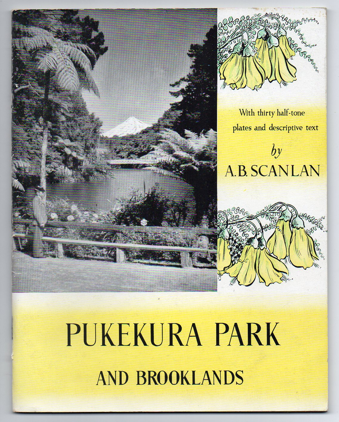 Image for Pukekura Park and Brooklands - New Plymouth, New Zealand
