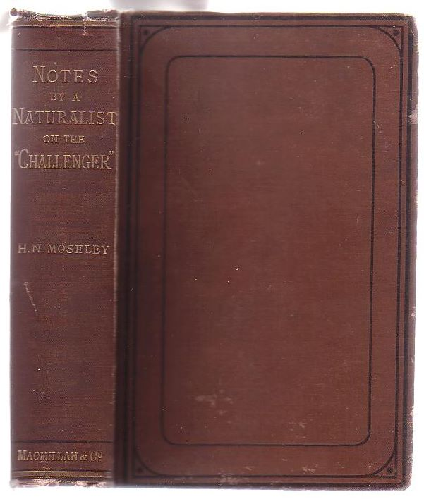 "Image for Notes by a Naturalist on the ""Challenger,"" Being an Account of Various Observations Made During the Voyage of H.M.S. ""Challenger"" Round the World, in the Years 1872-1876 [...]"