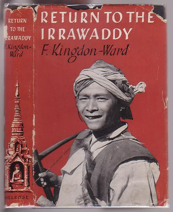 Image for Return to the Irrawaddy