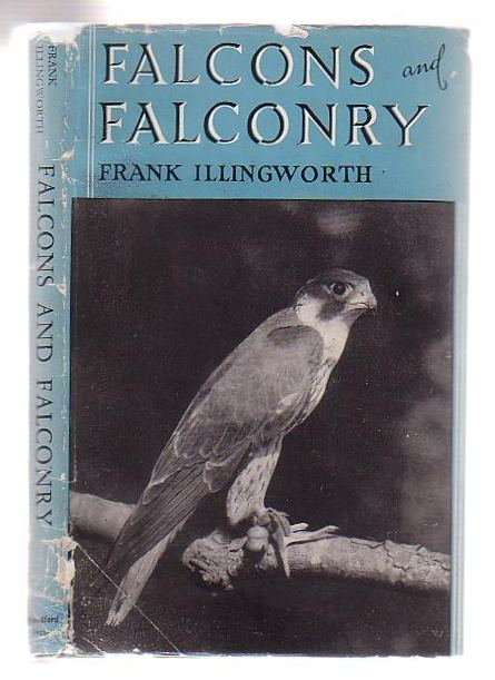 Image for Falcons and Falconry