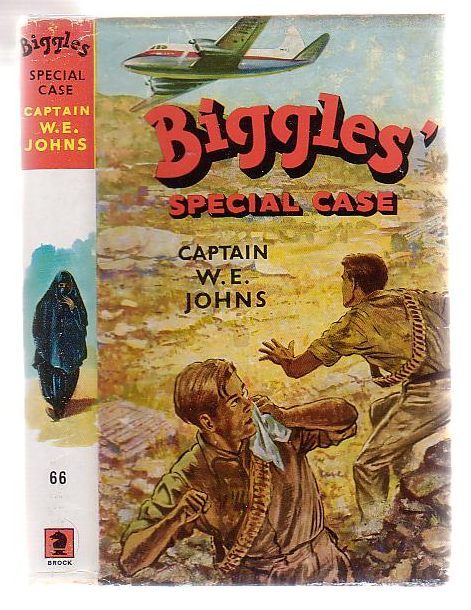 Image for Biggles' Special Case