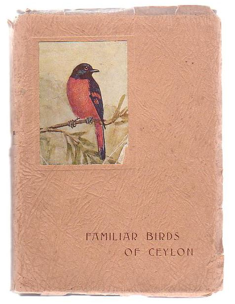 Image for Familiar Birds Of Ceylon